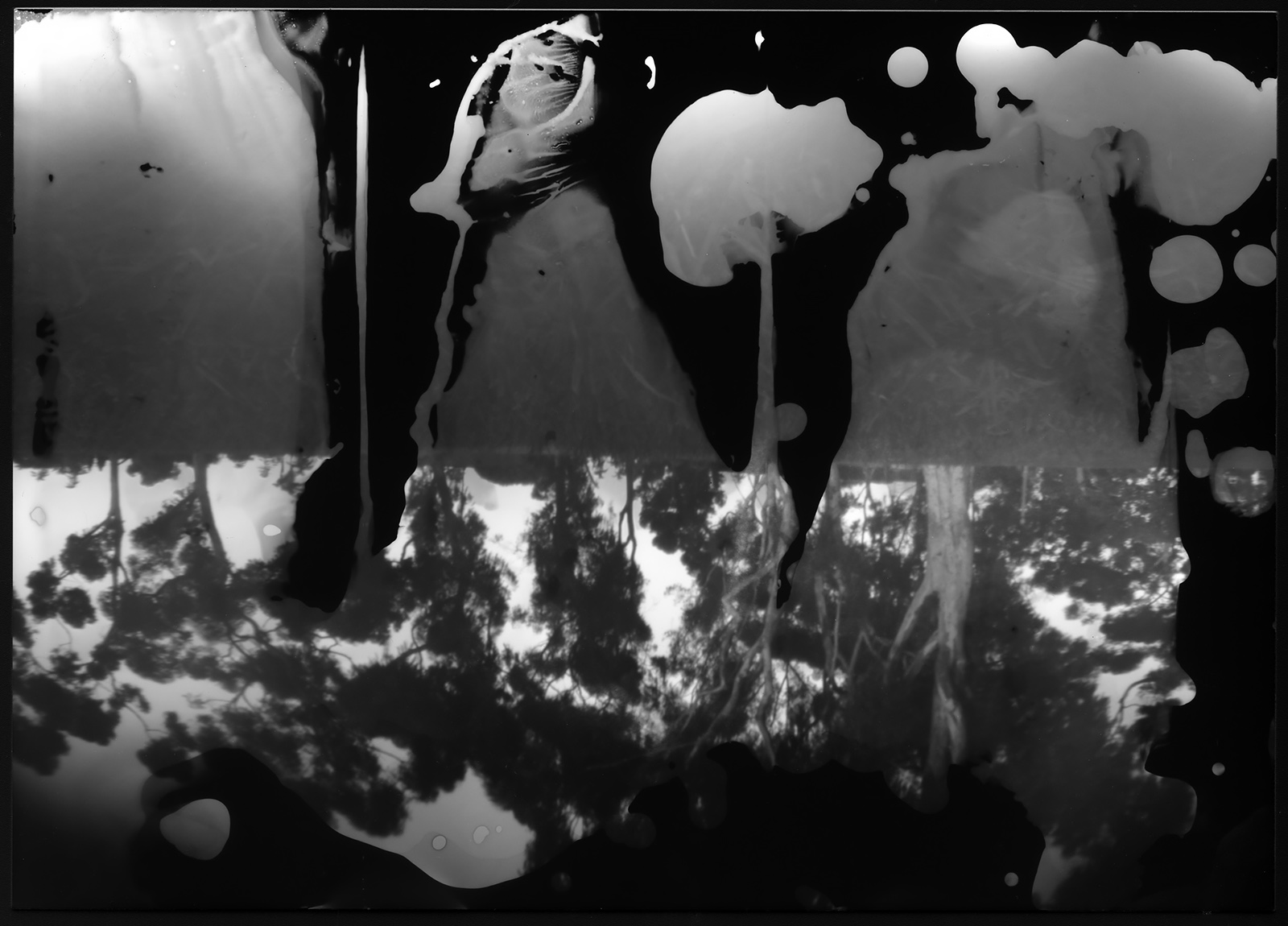 Making Black And White Art With Pinhole Cameras